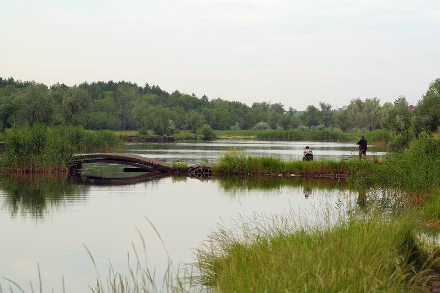 """фото """"тихое утро"""" метки: пейзаж, природа, лето"""