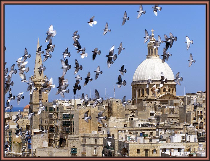 """photo """"Pigeons"""" tags: travel, Europe"""