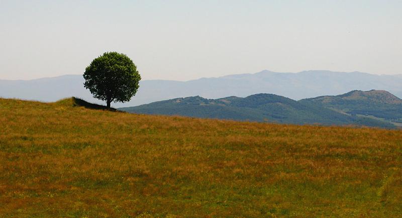"""фото """"Одиноко"""" метки: пейзаж, горы"""