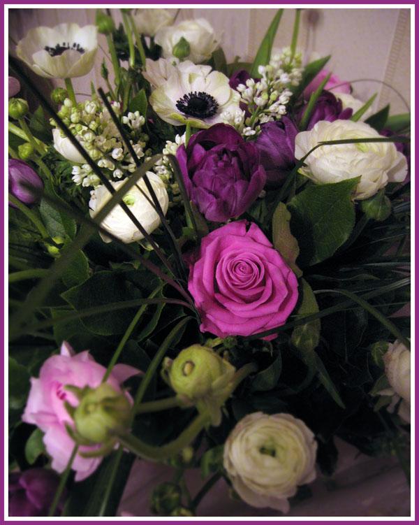 """фото """"Violet"""" метки: природа, цветы"""
