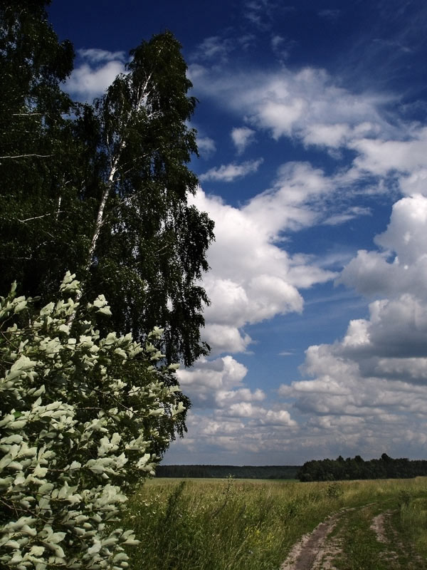 "фото ""Ветер"" метки: пейзаж, природа,"