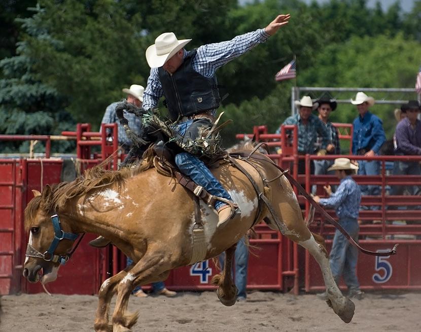 """фото """"rodeo"""" метки: спорт,"""