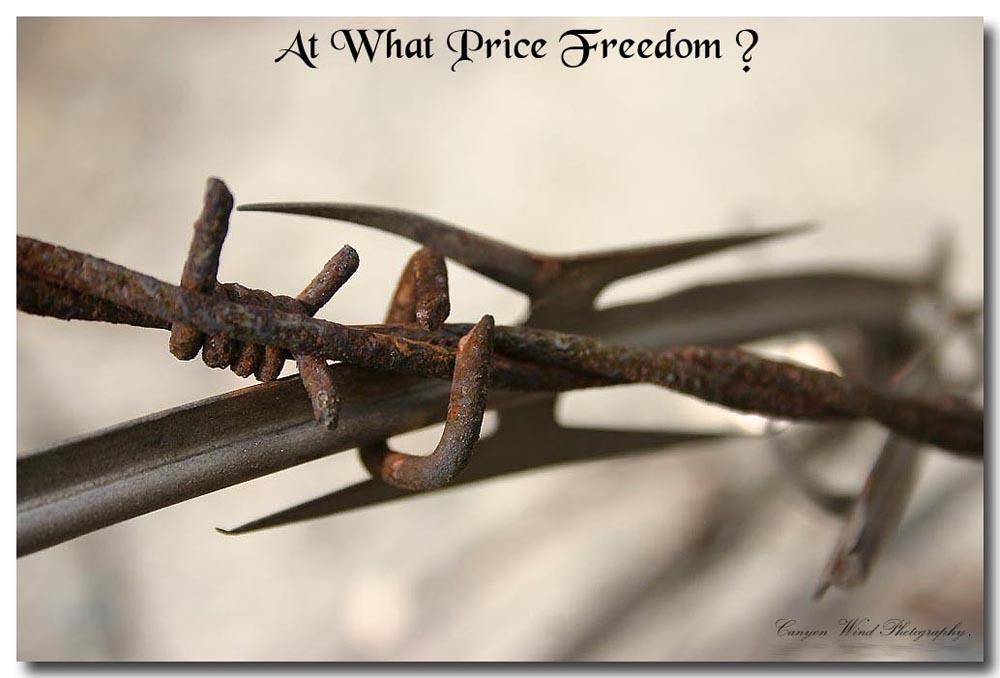 "фото ""At what price freeedom ?"" метки: репортаж, макро и крупный план,"