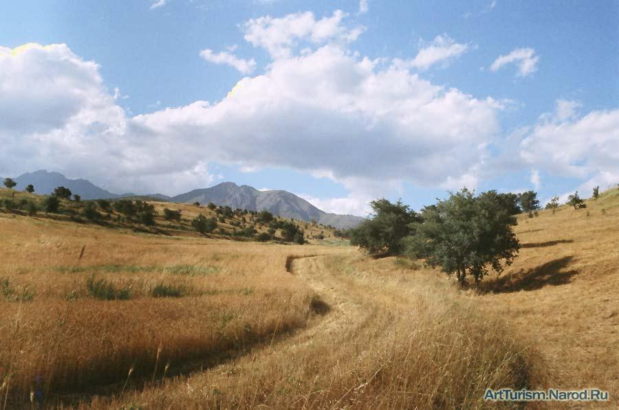 """фото """"Полевая дорога"""" метки: пейзаж, горы"""
