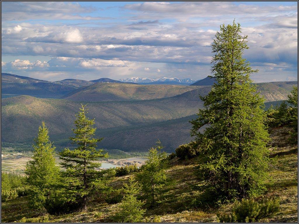 """фото """"Вечерний горно-лесной пейзаж"""" метки: пейзаж, горы, лес"""