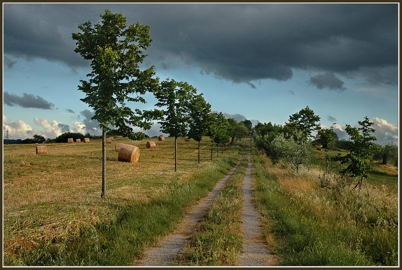 """фото """"По просёлочной дороге..."""" метки: пейзаж, путешествия, Европа, лето"""