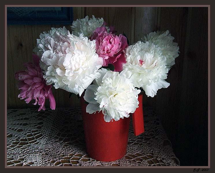 """фото """"Букет"""" метки: природа, цветы"""