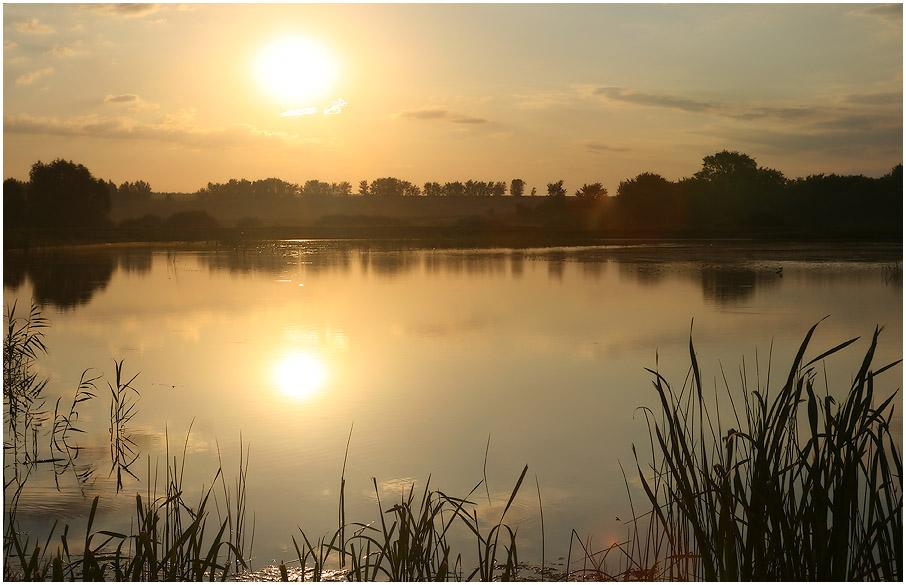 "фото ""Рассвет на пруду"" метки: пейзаж, вода, закат"