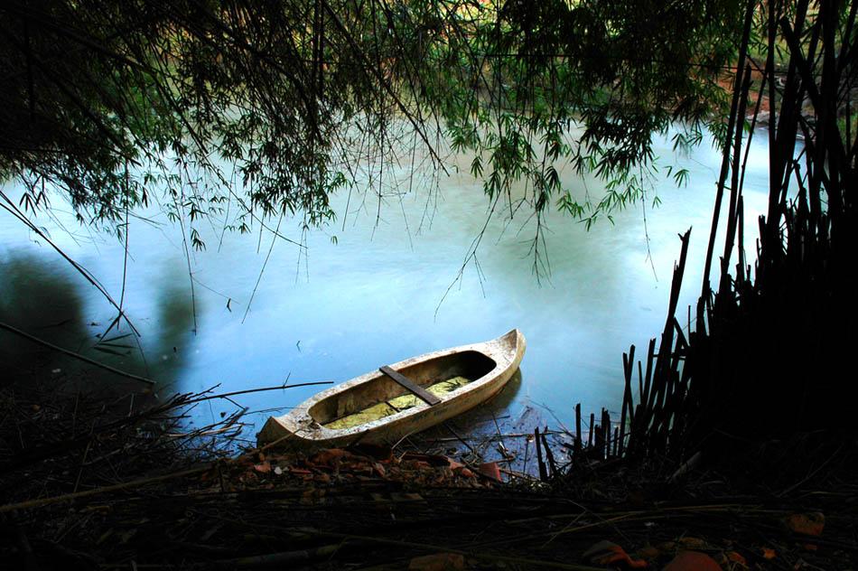 "фото ""Janela"" метки: пейзаж, вода, лес"