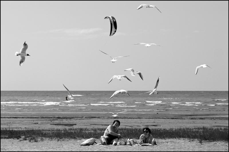 """фото """"Смотрите, он тоже движется по ветру!"""" метки: пейзаж, вода"""