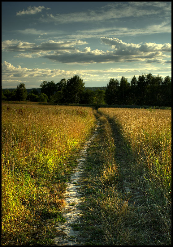 "фото ""***"" метки: пейзаж, лето"
