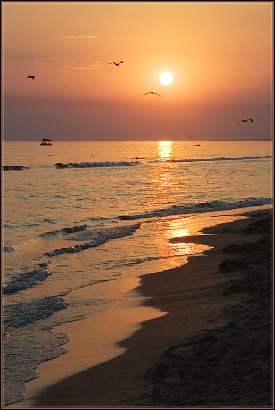 "фото ""Закат на песке."" метки: пейзаж, закат"