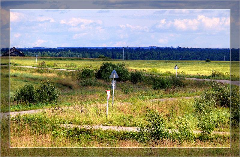 """фото """"ZигZаги"""" метки: пейзаж, лето"""