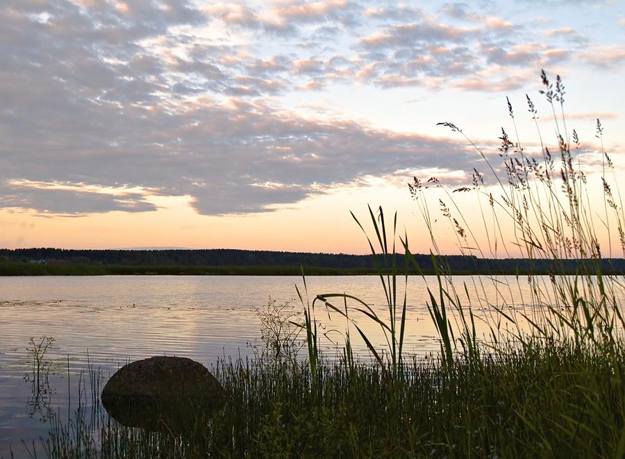 """фото """"Выборгская вечерняя болотная"""" метки: пейзаж, закат"""