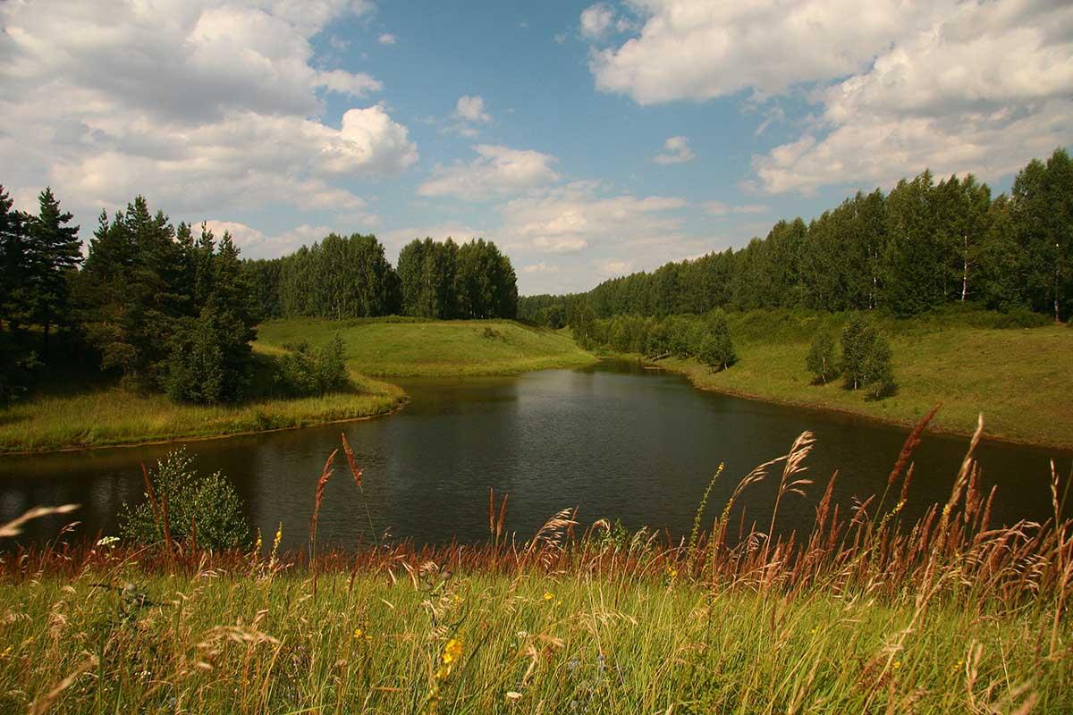 """фото """"У пруда"""" метки: пейзаж, вода, лето"""