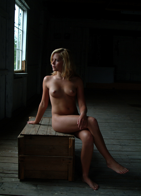 """photo """"In the windows light"""" tags: nude, portrait, woman"""