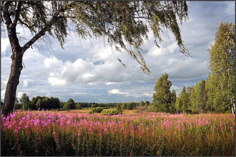 июльский пейзаж фото песня
