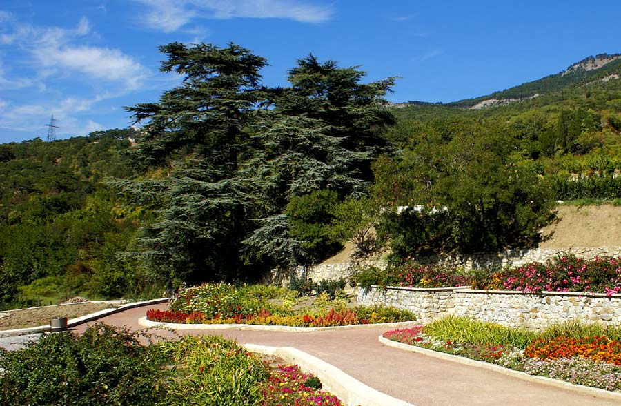 """фото """"В Никитском ботаническом саду"""" метки: ,"""
