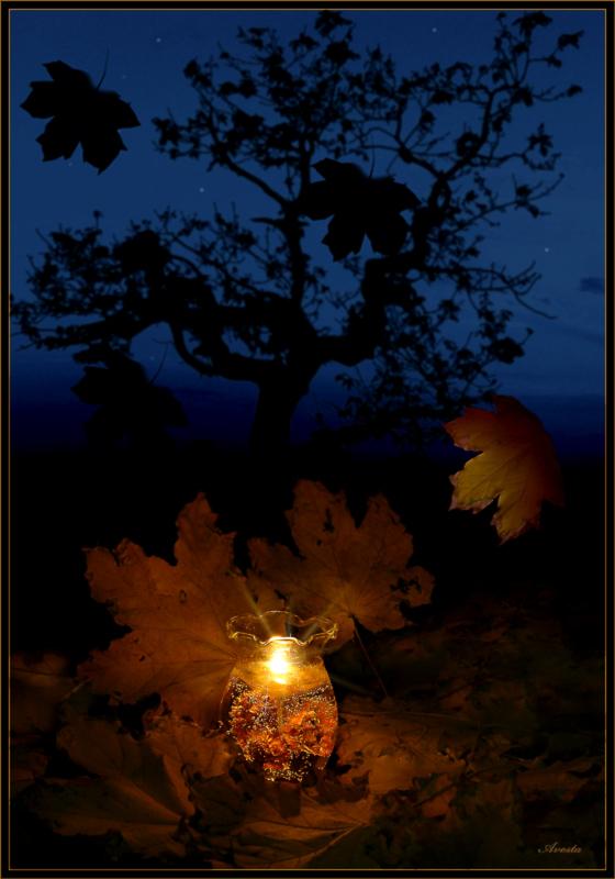 Открытки осень ночь, лебедями