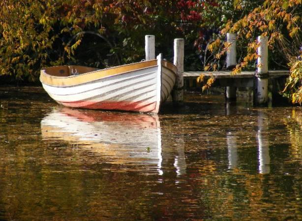 """фото """"Autumn in Copenhagen."""" метки: природа,"""