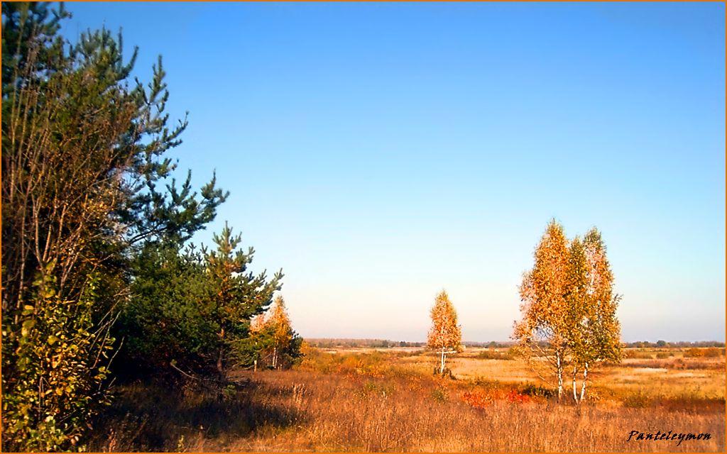 """photo """"Autumn open space"""" tags: landscape, autumn"""