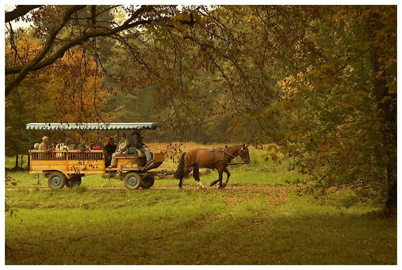 """фото """"****"""" метки: пейзаж, путешествия, Европа, осень"""