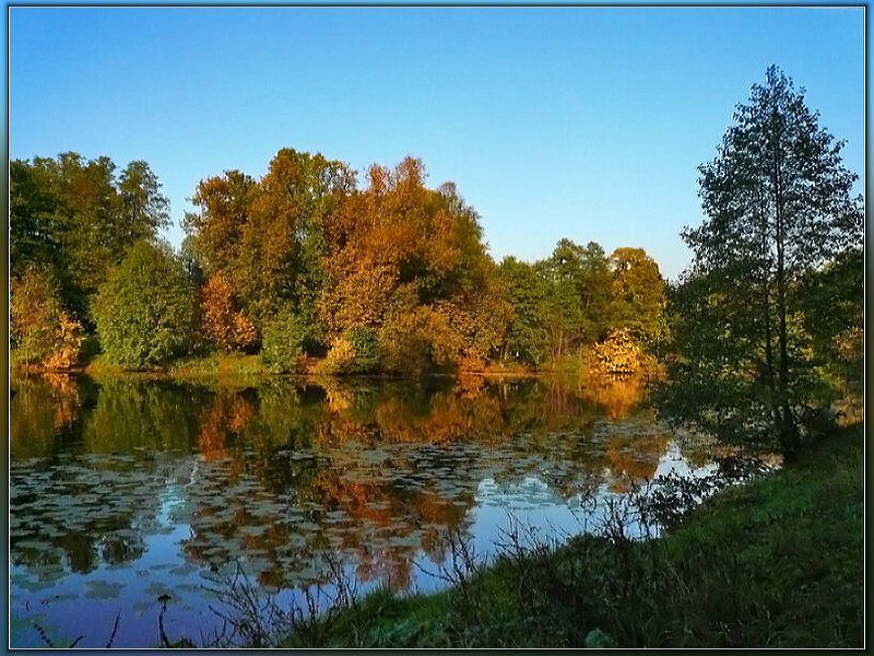 """фото """"Берендеево Царство"""" метки: природа,"""