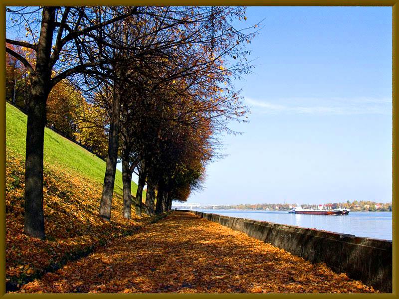 """фото """"На ковре из жёлтых листьев..."""" метки: город, пейзаж, осень"""
