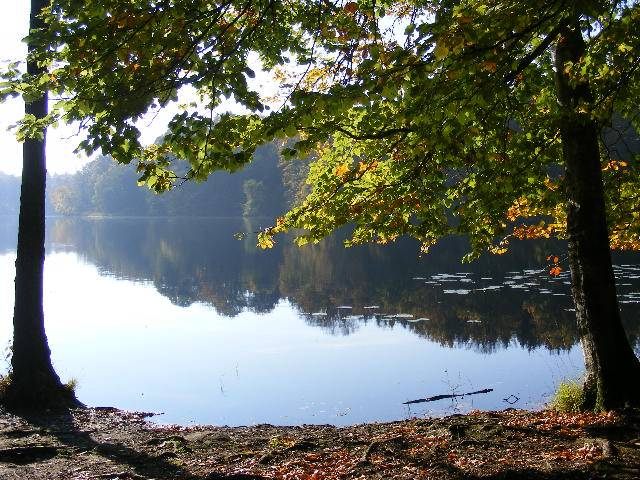 "photo ""Lake in autumn."" tags: nature,"