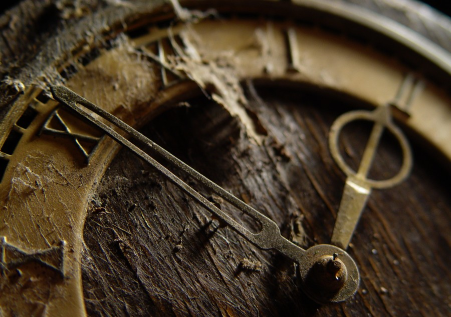 """photo """"***"""" tags: macro and close-up, old-time,"""