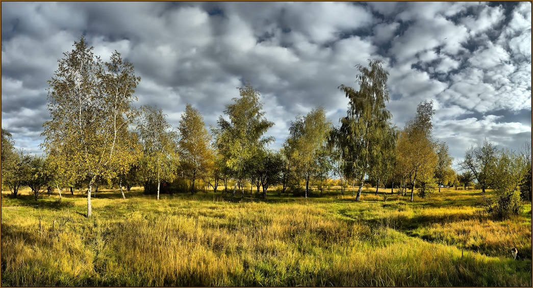 "photo ""October, 17"" tags: landscape, autumn"