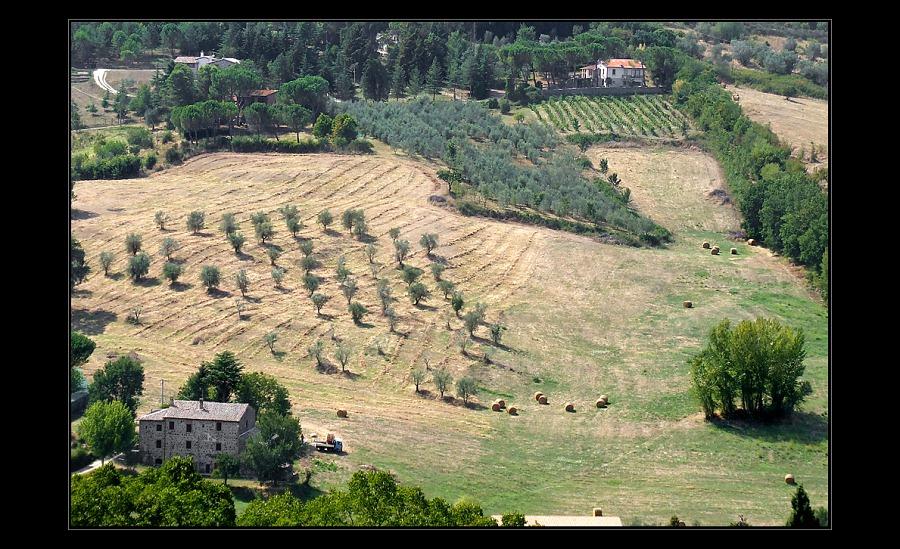 """фото """"Просторы Тосканы"""" метки: пейзаж, путешествия, Европа, лето"""