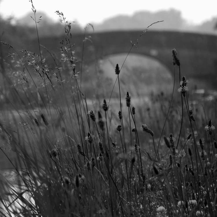 "photo ""***"" tags: black&white, landscape, summer"
