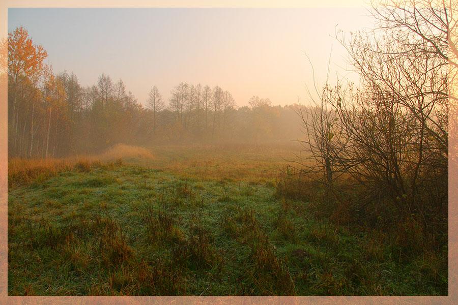 """фото """"Осенний утренний туман"""" метки: пейзаж, закат, осень"""
