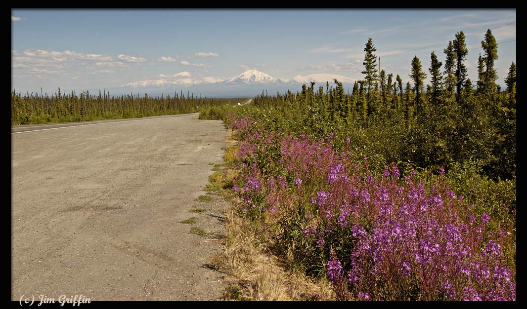 "photo ""The road to the big mountain in Wrangell-St. Elias"" tags: landscape, mountains, summer"