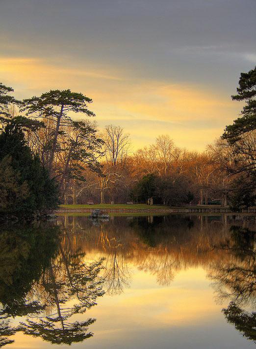 """фото """"Осенняя сказка"""" метки: пейзаж, вода, лес"""