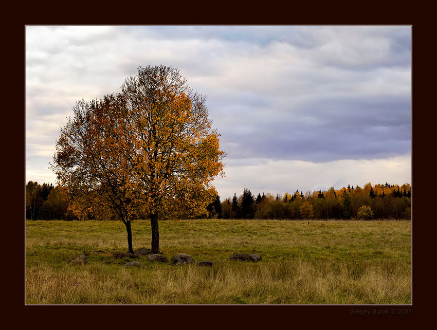 "фото ""2 (В цвете)"" метки: пейзаж, осень"