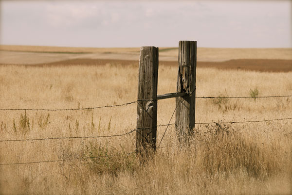 """photo """"Grass Lands"""" tags: landscape,"""
