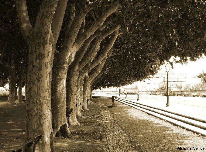 "фото ""in the park"" метки: пейзаж, путешествия,"