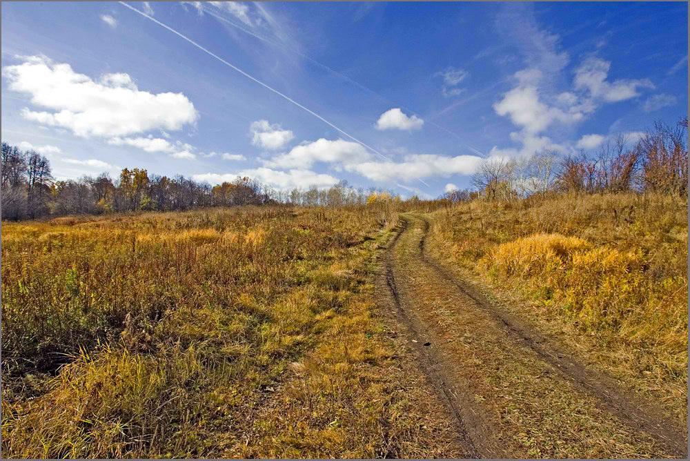 """фото """"Пути дороги..."""" метки: пейзаж, осень"""