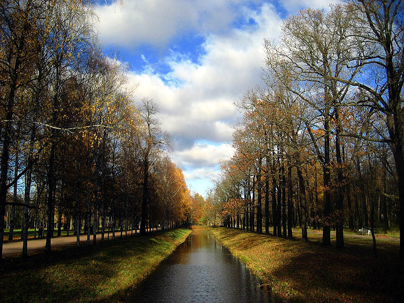 """фото """"Осень первоначальная."""" метки: пейзаж, осень"""