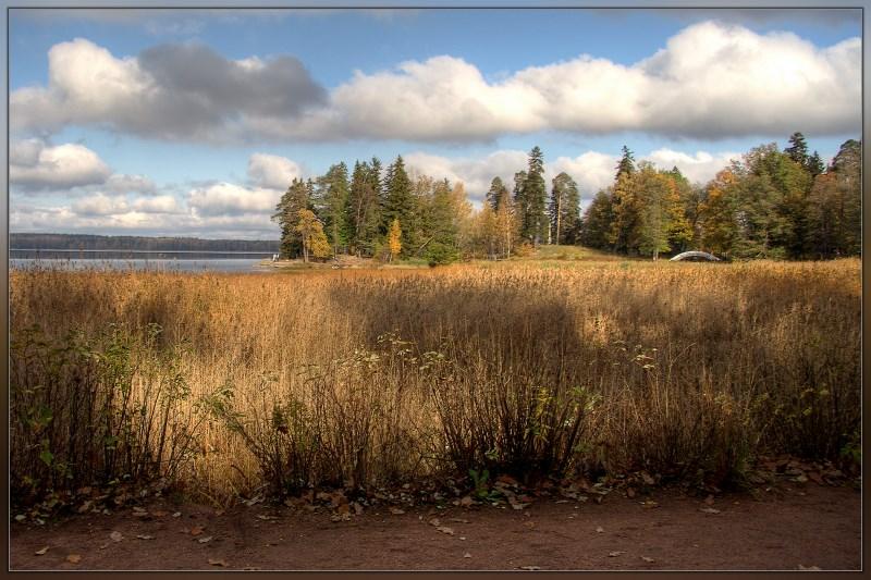 """фото """"Осень в Монрепо #4"""" метки: пейзаж, осень"""