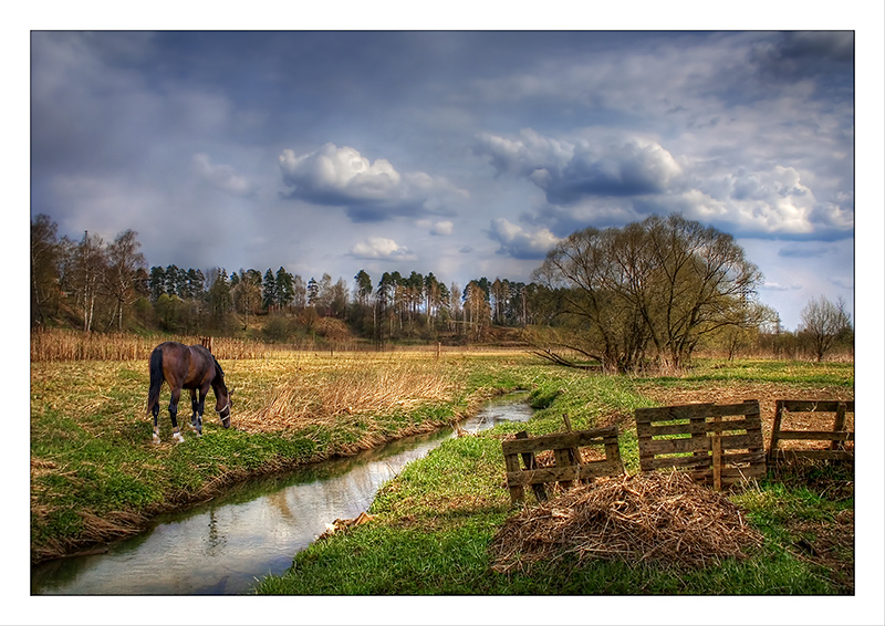 """photo """"Spring landscape"""" tags: landscape, spring"""