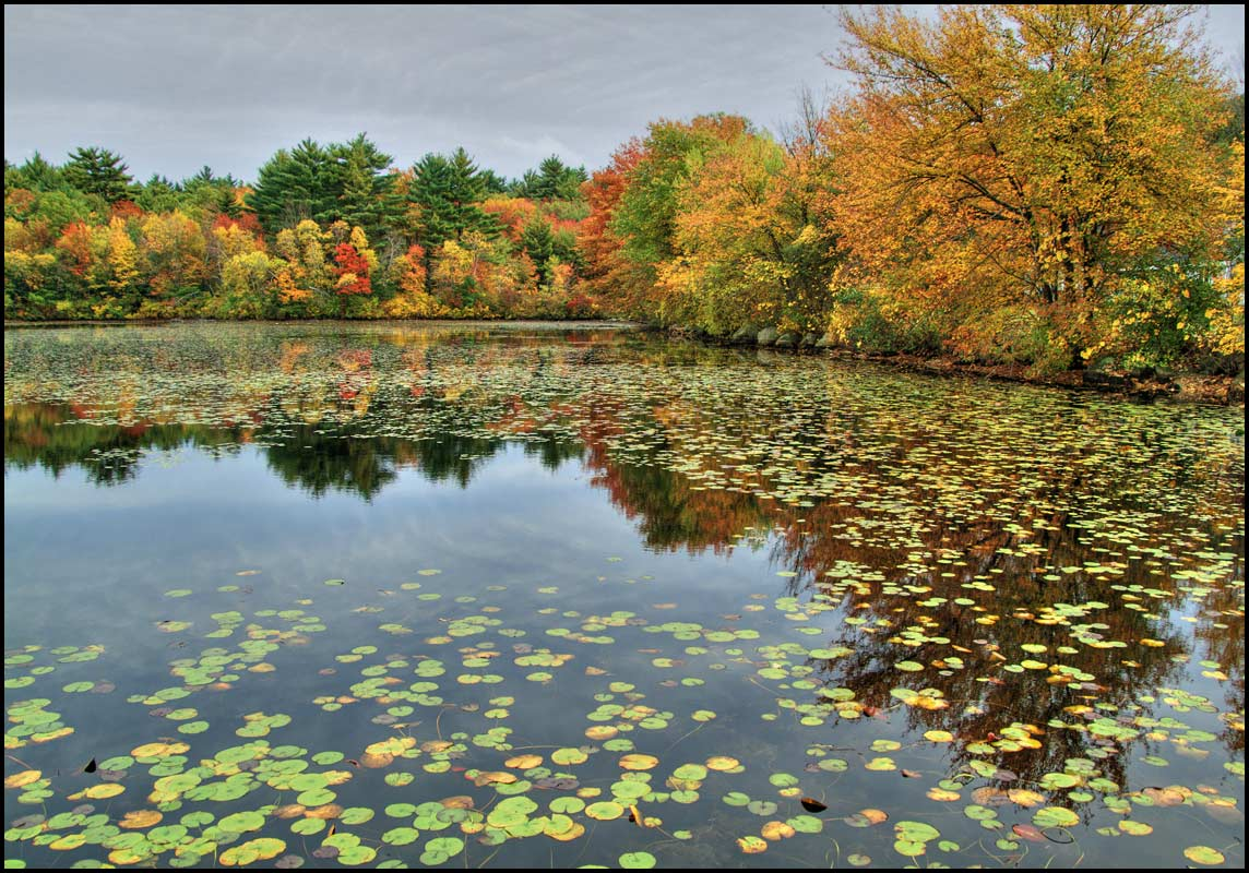 "photo ""Autumn in New England"" tags: landscape, forest, water"
