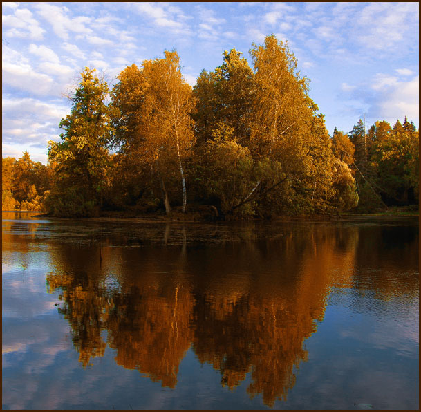 """фото """"Костёр осени"""" метки: пейзаж, осень"""