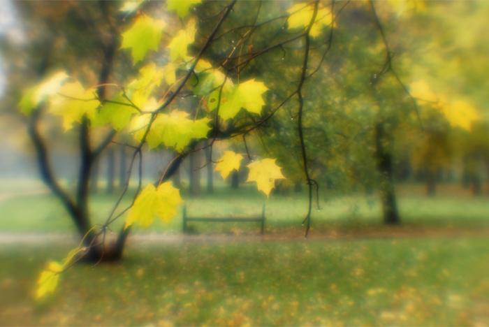 """photo """"#0077"""" tags: landscape, autumn"""