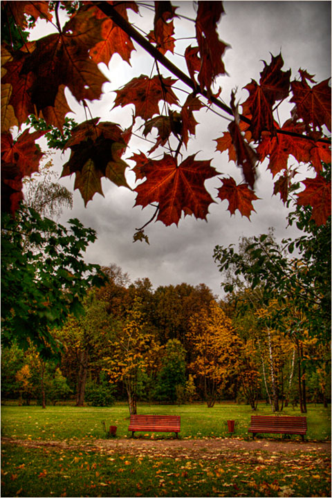 "photo ""Autumn park"" tags: landscape, autumn"