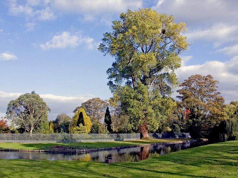 "photo ""An Autumn Mood"" tags: landscape,"