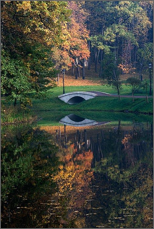 """фото """"Осенний марафон - 4"""" метки: пейзаж, природа, осень"""