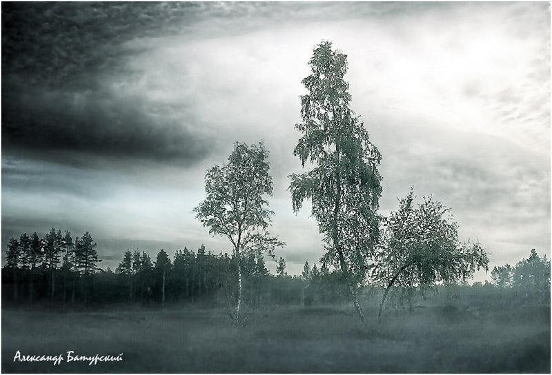 "фото ""Тревожное утро"" метки: ,"
